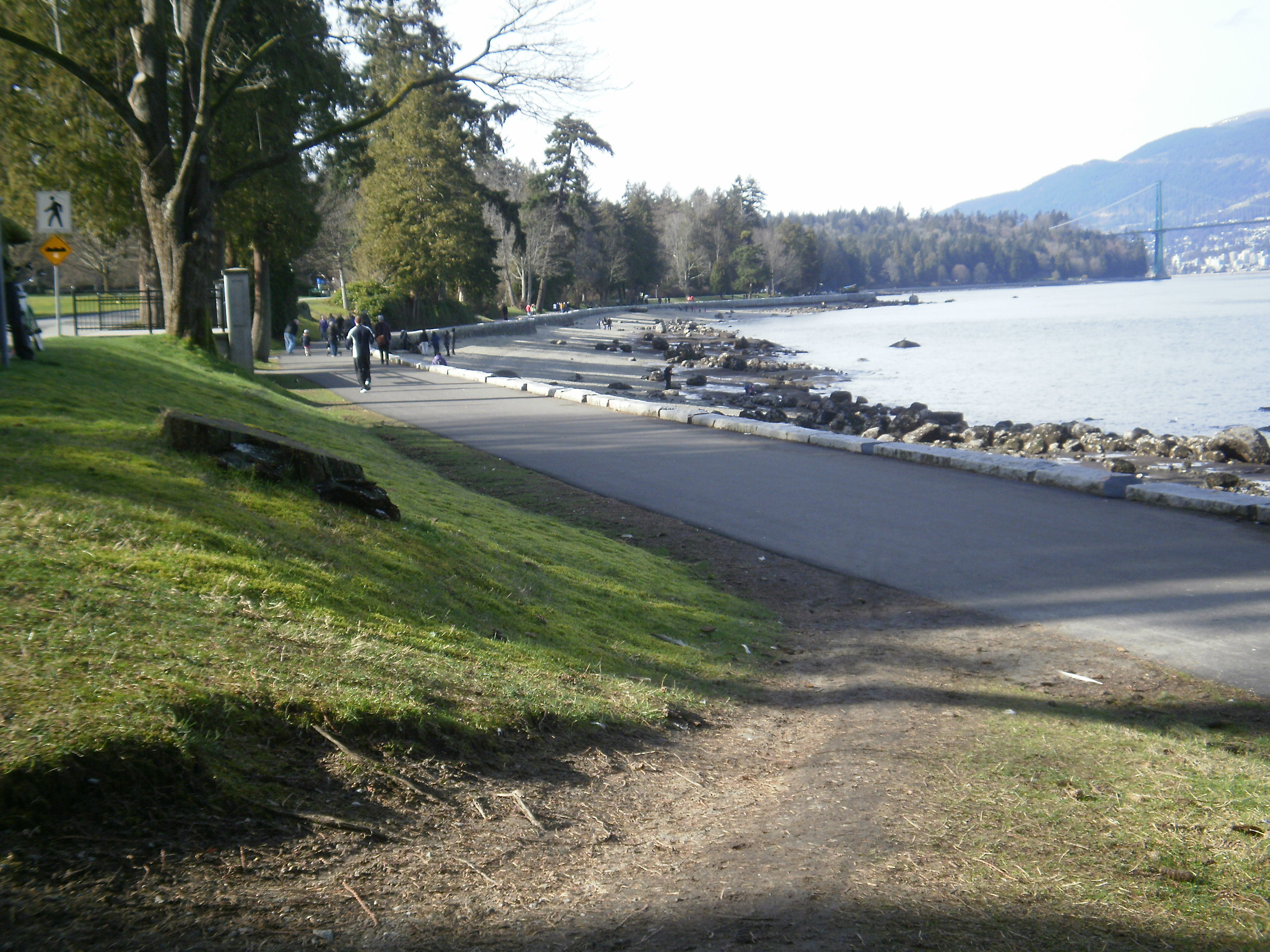 stanley park project After the windstorm of 2006 that devastated stanley park, the vancouver board of parks and recreation commissioned four groups of artists to conceive and con.